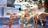 商场超市水产区及海鲜市场专用生鲜灯,是如何为海鲜鱼类增光添彩的