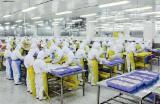 集保:食品工厂对照明设施有哪些要求